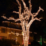Dallas Christmas light installers